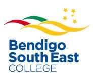 BSE Color Logo